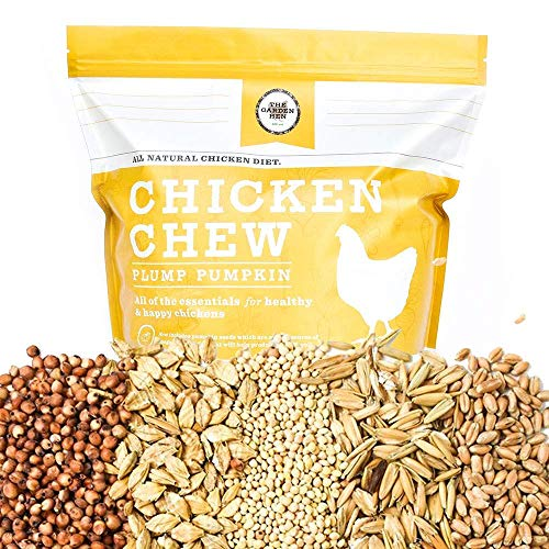 (Chicken Chew: Non GMO, No Corn, No Soy All Natural Whole Grain Layer Feed Plump Pumpkin Flavor With Organic Raw Pepitas )