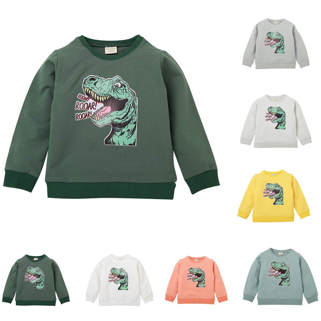 Kleinkind Baby Jungen M/ädchen Cartoon Dinosaurier drucken Langarm Shirt Herbst Winter Pullover Sweatshirt Tops Huhu833 Kinder Sweatshirts Jungen