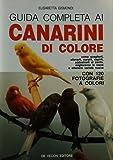 Guida completa ai canarini di colore