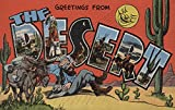 Greetings from the Southwest Desert (36x54 Giclee Gallery Print, Wall Decor Travel Poster)