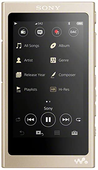 Sony NWA45N - Reproductor de Audio Walkman (16 GB, Hi-Res Audio,