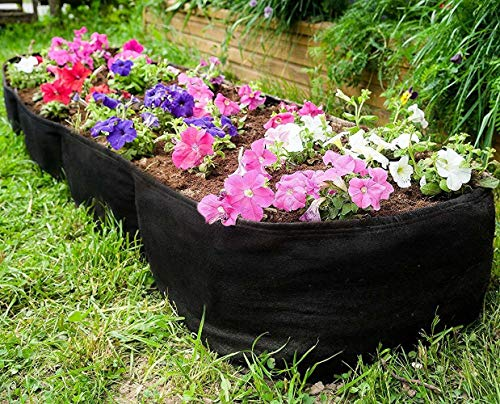 Kenley Fabric Raised Garden Bed for Vegetables