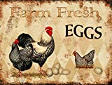 Barnyard Designs Farm Fresh Eggs Retro Vintage Tin Bar Sign Country Home Decor 13'' x 10''