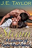 Steam: A Collection of Erotic Short Stories