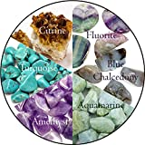 Pisces Zodiac Bundle 12pc Quality Handpicked Healing Crystals; Astrological Stones for Organization, Trust, Relaxing, Meditation, Motivation, Metaphysical, All Natural Gems: Raw and Tumbled (Premium)