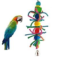Dylandy Juguete de Madera para Pájaros, Juguete para Colgar en la Escalera, Cuerda de Algodón, Juguete para Masticar Pájaros, Juguete para Loros y periquitos, Cockatoo (Colorido)