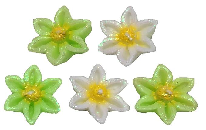 Buy Pn Exclusive Floating Six Petal Daisy Flower Type Set Of 5