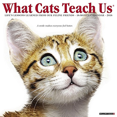 - What Cats Teach Us 2018 Calendar: Life's Lessons Learned from Our Feline Friends