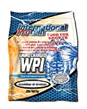 Amino Charged WPI (Whey Protein Isolate) - (Cookies)