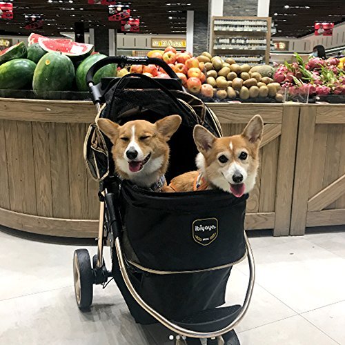 How Do I Get My Dog Used to a Stroller?