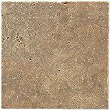 Dal-Tile T31118181U Travertine Tile Noce HONED 24 x 48