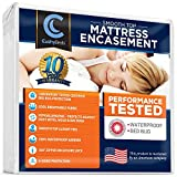 "Smooth Top Mattress Encasement Protector Cover by CushyBeds - Patented 360 Zipper Enclosure w/ Bed Bug Banisher, Breathable 100% Waterproof Noiseless 6-Sided Protection - Queen (11""- 15"" Depth)"
