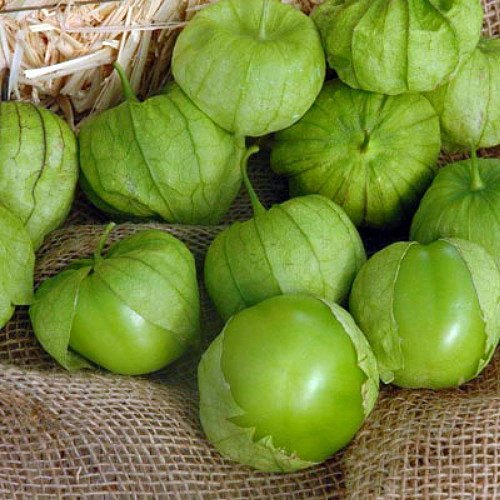 tomatillo green salsa - 6