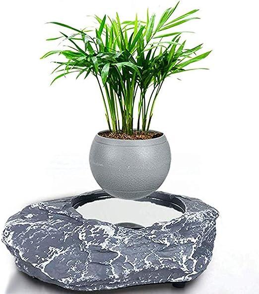 Floral Decor Home Garden Levitating Air Bonsai Pot Rotation Flower Pot Topografiapv Cl