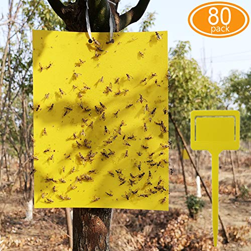 ALIGADO 80 Sheets Yellow Sticky Traps with Twist Ties and Plastic Holders, for Capture Insects Like Gnats, Flies