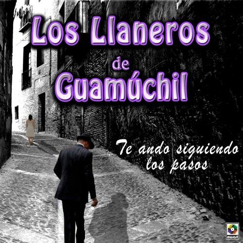 Amazon.com: Te Ando Siguiendo los Pasos: Los Llaneros De Guamuchil