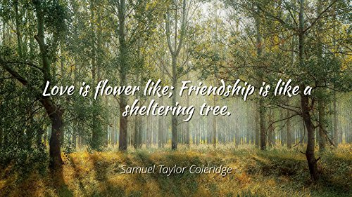 Home Comforts Samuel Taylor Coleridge - Famous Quotes Laminated Poster Print 24x20 - Love is Flower Like; Friendship is Like a sheltering Tree.