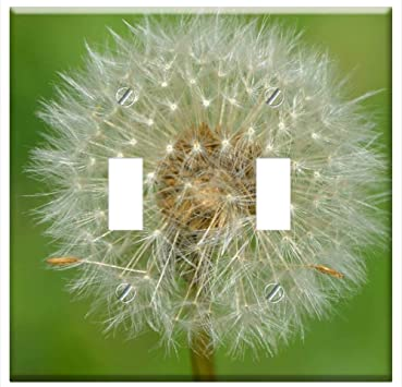 Switch Plate Double Toggle Dandelion Fruit Egret Nature