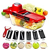 BYETOO Mandoline Slicer Vegetable Cutter Grater Chopper Julienne Slicer-6 Interchangeable Blades Peeler,Hand Protector,Food Storage Container - Cutter Potato,Tomato,Onion,Cheese,Cucumber etc