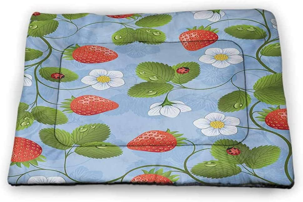 DayDayFun Ladybugs Dog Mat Spring Theme with Flowers Ladybugs and Butterflies Transformation Morph Print Pet Mats for Food and Water Pale Green