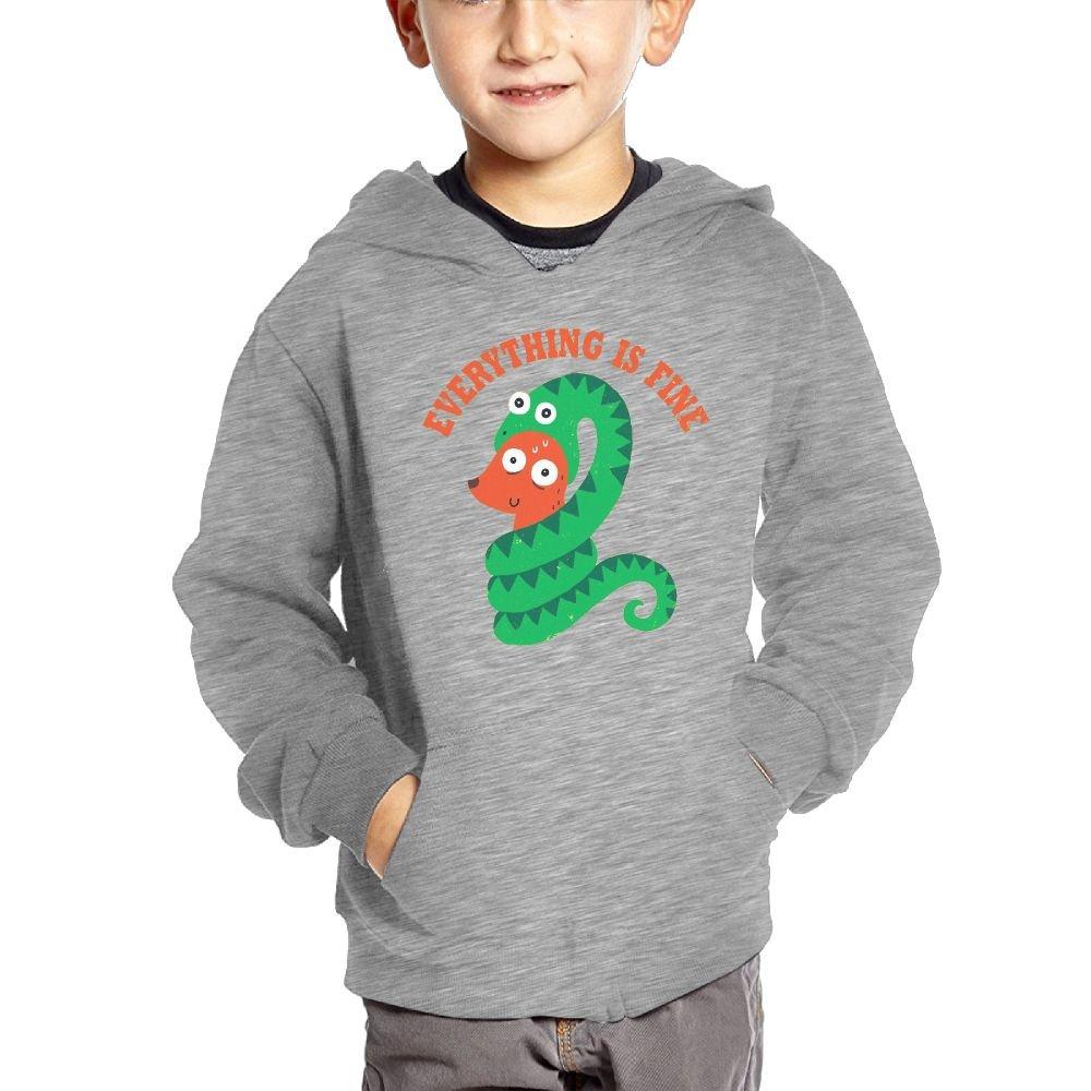 Joapron Everything Is Fine Kids Long Sleeve Pocket Pullover Hooded Sweatshirt Ash Size 4 Toddler