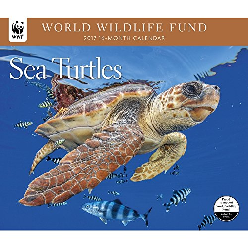 2017-world-wildlife-fund-sea-turtles-deluxe-wall-calendar
