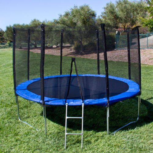 12' Round Trampoline Set With Safety Enclosure, Padding & Ladder jumping