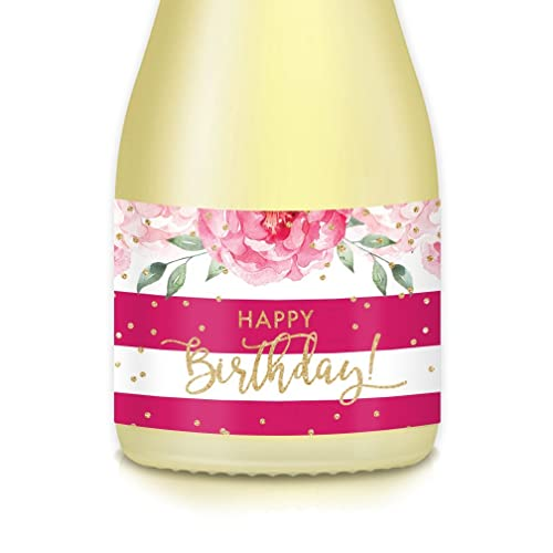 Gift Ideas For Womans Surprise Birthday Party 20 Count Magenta Pink Gold Sparkling Mini Champagne Wine Bottle Labels Mom Sister BFF Roomie