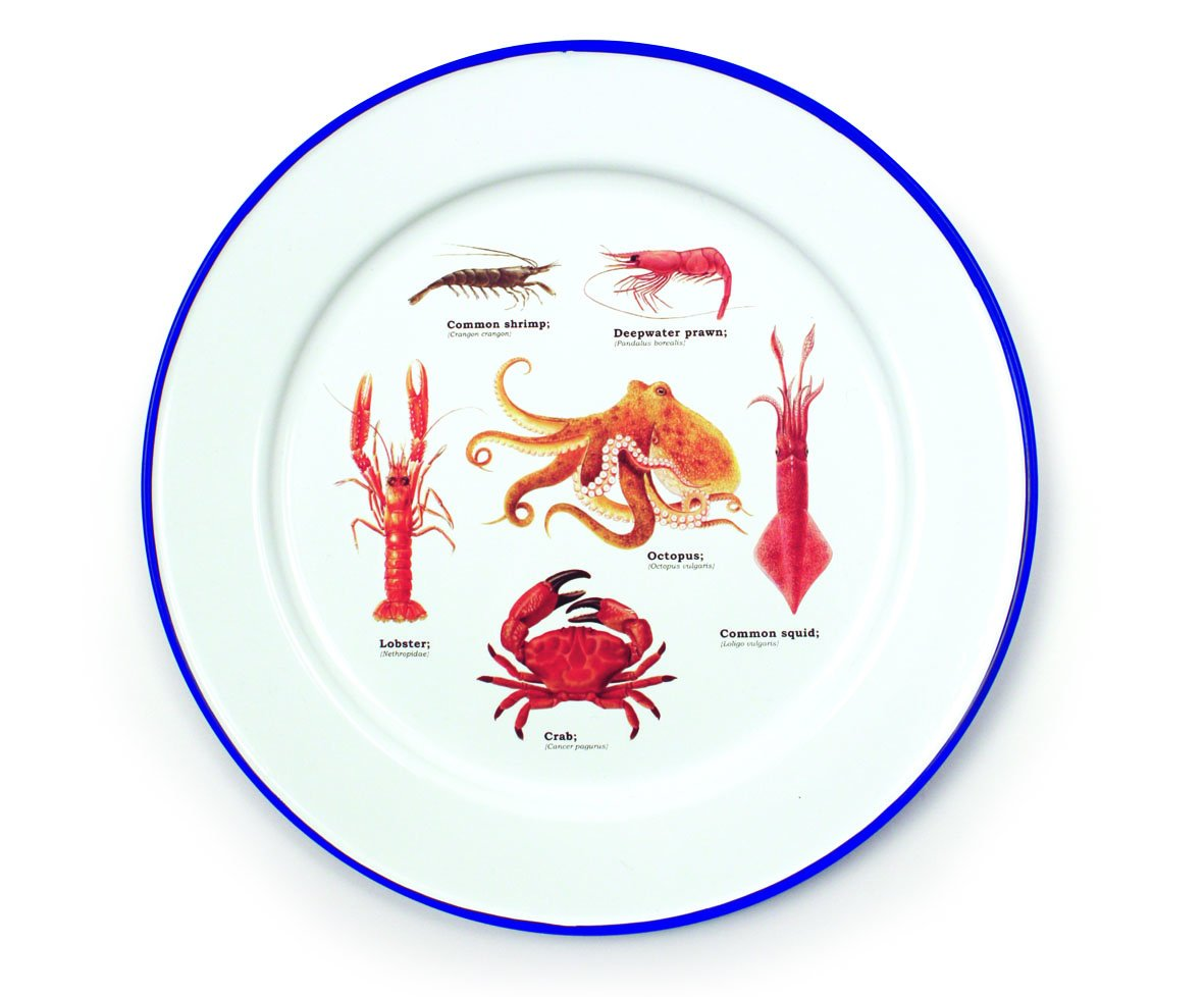Gift Republic GR270103 Sealife Enamel Plates, Multicolor
