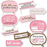 Funny Pink and Gold - Hello Little One - Girl Baby Shower Photo Booth Props Kit - 10 Piece