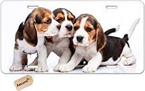 Amcove Cars License Plate Custom Design, Cute Pets Beagle Puppies Dogs License Plate Aluminum Metal License Plate Car Tag Novelty Home Decoration 6 inch X 12 inch