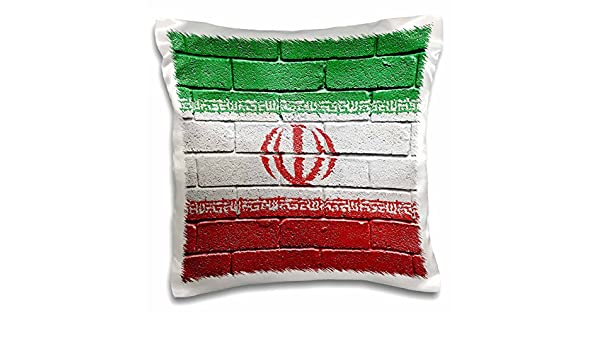 Amazon.com: 3D Rose National Flag of Iran Painted Onto a Brick Wall Iranian Design Pillowcase, 16