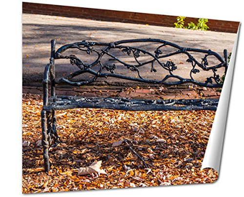 Ashley Giclee Fine Art Print, The Wrought Iron Ornamental Bench Closeup And Dry Leaves Under It On The, 16x20, AG6317245 (Front Shadow Bench)