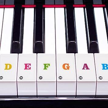 Dilwe Pegatinas para Pianos, Etiquetas Engomadas Dominantes Desmontables del Teclado Musical del Piano(Transparente): Amazon.es: Deportes y aire libre