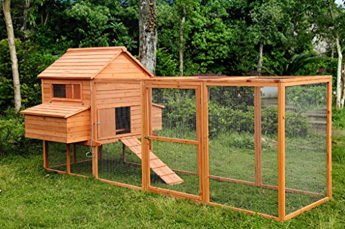 The-Rhode-Island-Homestead-Large-CHICKEN-COOP