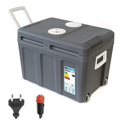 Amazon.es: Dino Fuerza del paquete 131002 Thermo caja ...