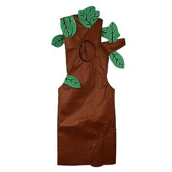 Disfraz Vegetal Árbol Actuación Sombrero Verde Marrón Bosque ...