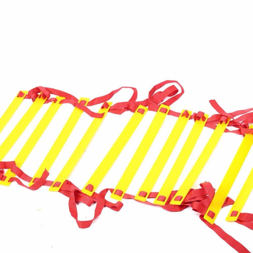 豪華で新しい Longreen 4 B07B9KN575 M 5 M M 6 M M 8 M 10 M 8 – 20 Pieces横線耐久性Agility Ladderサッカー速度フットボールFitness Feetスポーツトレーニング 5M B07B9KN575, オフィス家具のカグクロ:1cd49bf3 --- cfeedback.mycarebee.com