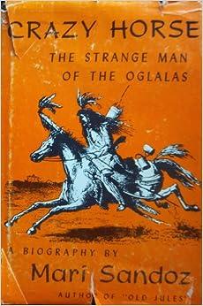 Crazy Horse's Vision (Paperback)