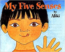 Image result for my five senses book