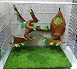 Hot Sale! 5 Pcs KPS Sugar Glider Cage Set Forest Pattern Light Brown Color By Polar Bear's Republic