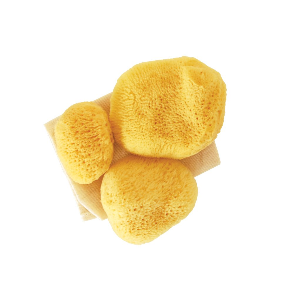 Premium Ultra Soft Sea Pearls Reusable Sea Sponges - Multi Size 3 Pack
