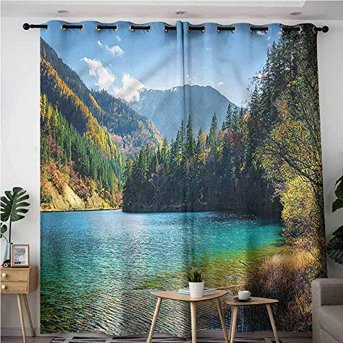 XXANS Extra Wide Patio Door Curtain,Landscape,China Arrow Bamboo Lake,Room Darkening, Noise Reducing,W84x108L (Top Of The Lake China Girl Review)