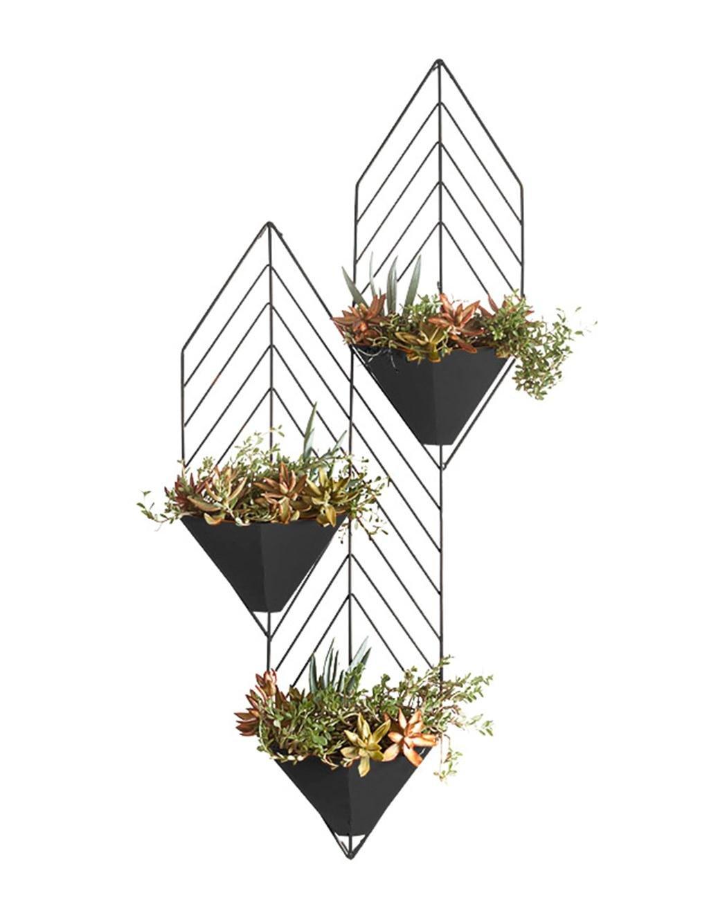 Eisen-Wand-hängendes Dreistufiges hängendes Orchidee-Blumen-Gestell, Wand-hängendes grünes Rettich-Blumen-Regal ( farbe : Schwarz )