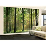 (100x144) Autumn Forest Huge Wall Mural Art