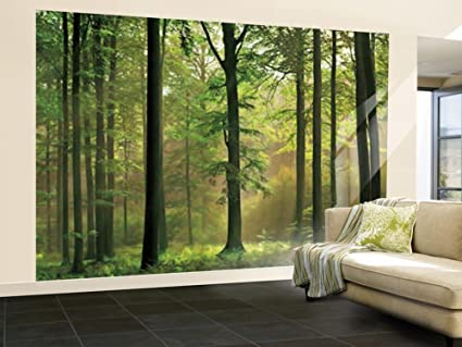 Amazoncom 100x144 Autumn Forest Huge Wall Mural Art Home Kitchen
