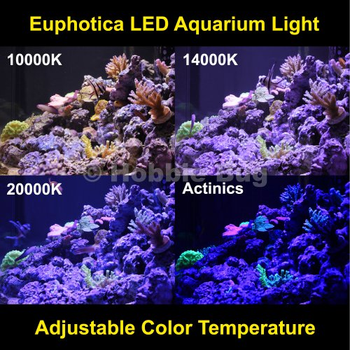 Euphotica 16 Quot Led Aquarium Light Dimmable Full Color