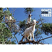 Goats in Trees 2016 Calendar by ML Publishing Group (2015-11-16)