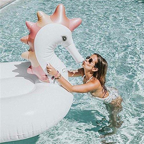 Auberginenform 270x110x170cm DAXGD Aufblasbarer Pool Float Rafts Pool Lounger mit Handluftpumpe