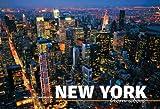 New York from Above, Elizabeth Bibb, 8854406120